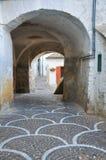 alleyway Bovino La Puglia L'Italia Fotografia Stock Libera da Diritti