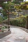 Alleyway in Capri Immagini Stock Libere da Diritti