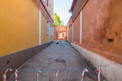 Alleyway with cats and dogs. Narrow alleyway with several cats and dogs stock photography