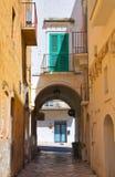 alleyway Fasano Puglia Italië Royalty-vrije Stock Foto's
