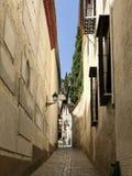 Alleyway in Granada Spain. Stone paved narrow alley between two buildings in Granada Spain stock photo