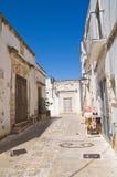 alleyway Laterza La Puglia L'Italia Fotografia Stock Libera da Diritti