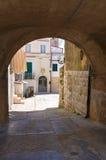 alleyway Minervino Murge La Puglia L'Italia Immagine Stock Libera da Diritti