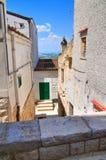 Alleyway. Minervino Murge. Puglia. Italy. Royalty Free Stock Photography
