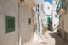 alleyway Noci La Puglia L'Italia Immagine Stock Libera da Diritti