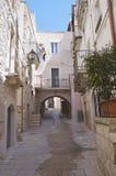 alleyway Palo del Colle Apulia royalty-vrije stock fotografie