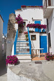 Alleyway. Peschici. Puglia. Italy. Stock Images