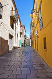 alleyway Pietragalla La Basilicata L'Italia Immagini Stock