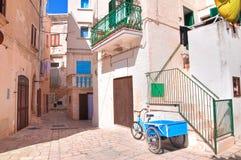 alleyway Polignano een Merrie Puglia Italië stock afbeelding