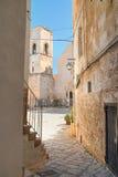 alleyway Polignano una giumenta La Puglia L'Italia Fotografia Stock