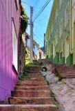 Alleyway ripido a valparaiso Immagine Stock Libera da Diritti