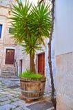 Alleyway. Rutigliano. Puglia. Italy. Royalty Free Stock Image