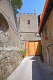 Alleyway. Soriano nel Cimino. Lazio. Italy. Alleyway of Soriano nel Cimino. Lazio. Italy Royalty Free Stock Image