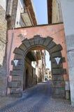 Alleyway. Soriano nel Cimino. Lazio. Italy. Alleyway of Soriano nel Cimino. Lazio. Italy Stock Photos