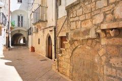 alleyway Turi La Puglia L'Italia Fotografia Stock Libera da Diritti