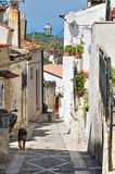 Alleyway. Vico del Gargano. Puglia. Italy. Royalty Free Stock Photos