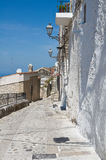 Alleyway. Vico del Gargano. Puglia. Italy. Stock Photos