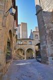 Alleyway. Viterbo. Lazio. Italy. Stock Images