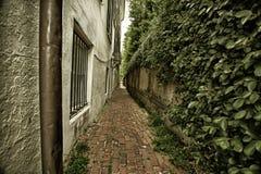 Alleyway w Charleston, Południowa Karolina Fotografia Royalty Free