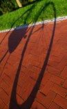 Allez à vélo en moulant une ombre sur le trottoir et la pelouse Image stock