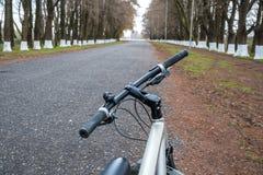 Allez à vélo sur la route parmi les arbres, Poti, la Géorgie image stock