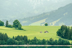 Allgäu meaddow. Landscape from lake forggen over allgäu meaddows with wooden hut Royalty Free Stock Photo