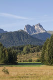 Allgaeu landscape Stock Image
