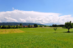 Allgaeu view. Landscape view of Allg�u, a german county between upper swabia and Lake constance, Baden-Wuerttemberg, Germany Stock Images