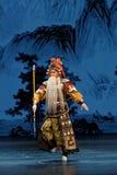 Allgemeine Straße Abschnitt-chinesische Plum Blossom Prize Art Troupe Stockfotos
