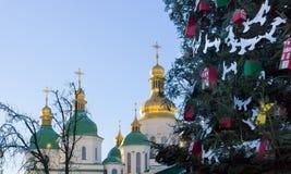 Allgemeine Weihnachtsbäume und Hauben der Kathedrale Lizenzfreies Stockbild