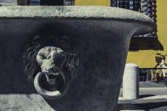 Allgemeiner Hahn mit dem Kopf eines Löwes lizenzfreie stockbilder