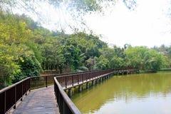 Allgemeiner Park Bangkajao, Thailand Lizenzfreie Stockbilder
