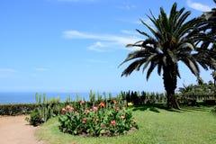 Allgemeiner Park in Barranco in Lima stockbilder