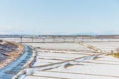 Allgemeiner Park mit weißem Schnee Stockfotos