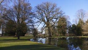 Allgemeiner Park von Schloss Liebling, im See in Förch, hohe Bäume lizenzfreies stockbild