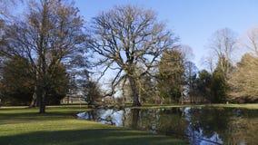 Allgemeiner Park von Schloss Liebling, im See in Förch, hohe Bäume stockfotos