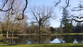Allgemeiner Park von Schloss Liebling, im See in Förch, hohe Bäume stockfoto