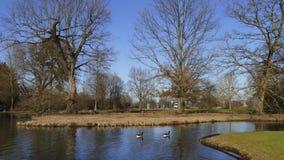 Allgemeiner Park von Schloss Liebling, im See in Förch, hohe Bäume lizenzfreies stockfoto