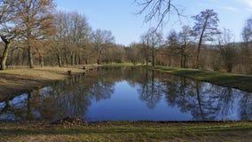 Allgemeiner Park von Schloss Liebling, im See in Förch, hohe Bäume lizenzfreie stockfotos