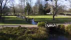 Allgemeiner Park von Schloss Liebling, im See in Förch, hohe Bäume lizenzfreie stockfotografie