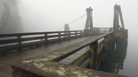 Allgemeiner Pier, Fraser River Fog stock footage