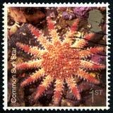 Allgemeiner Sun-Stern-BRITISCHE Briefmarke Lizenzfreies Stockbild