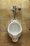 Allgemeiner Urinal lizenzfreie stockfotografie