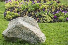 Allgemeines Myna im grünen Park (Acridotheres tristis tristis) Lizenzfreie Stockfotografie