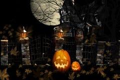 Allhelgonaafton Cat Pumpkins Haunted House arkivfoton