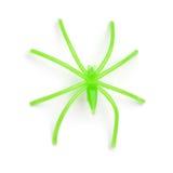 Allhelgonaafton - grön plast- spindel - på vit bakgrund Royaltyfri Foto