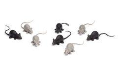 Allhelgonaafton - grupp av Toy Mice - som isoleras på vit bakgrund Arkivfoton