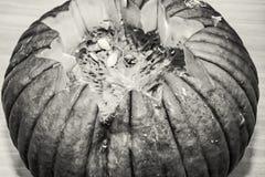 Allhelgonaafton sniden pumpa som är akromatisk Royaltyfria Bilder