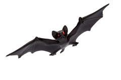 Allhelgonaafton - Toy Bat - som isoleras på vit bakgrund Royaltyfria Bilder