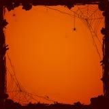 Allhelgonaaftonbakgrund med spindlar Arkivfoton